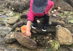 ATELIER ENFANT PÂTISSERIE - Arzon /Golfe du Morbihan 56-1