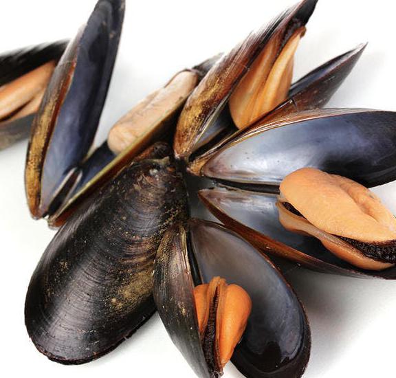 atelier cuisine: les fruits de mer à l'apéritif